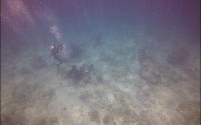 Cebu Olango, Tambuli Airplane, Kontiki Diving tour on 18 Apr 2015